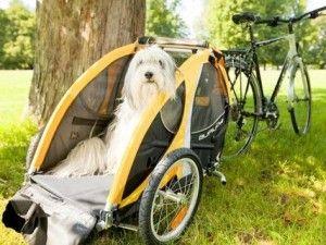 Remolques para bicicletas para perros