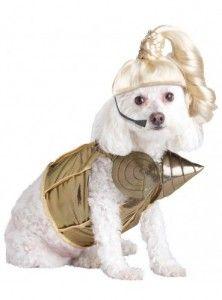 Disfraces para perros baratos online