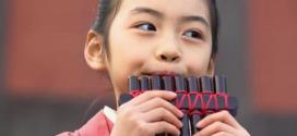 Dónde comprar una flauta de pan barata online
