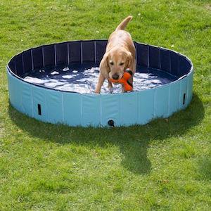 Comprar piscinas para perros baratas online for Piscinas para perros baratas