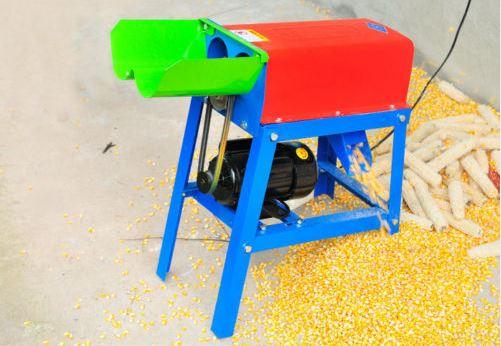desgranando maiz