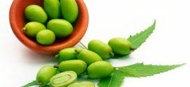 Dónde comprar aceite de neem barato online