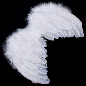 alas de ángel disfraz