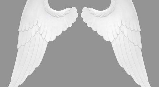 D nde comprar unas alas de ngel baratas online for Donde comprar encimeras baratas