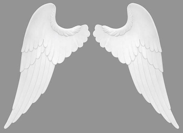 donde comprar alas de angel baratas